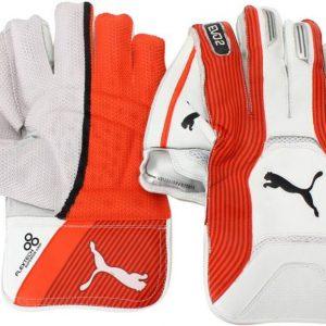 Keeping Gloves - PUMA Evo 2 Keeping Gloves